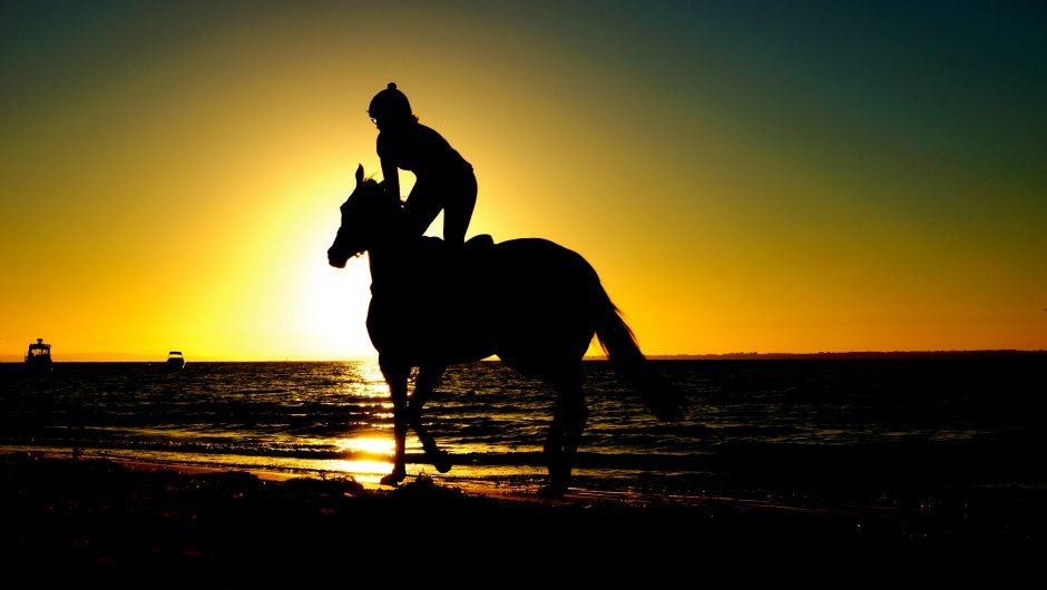 Get Back On The Horse: Dealing with Setbacks on the Artistic Path